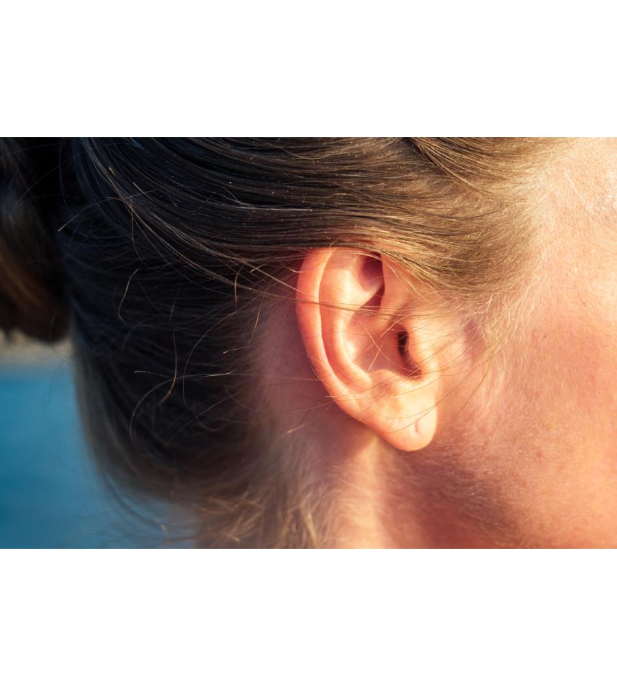 oreilles